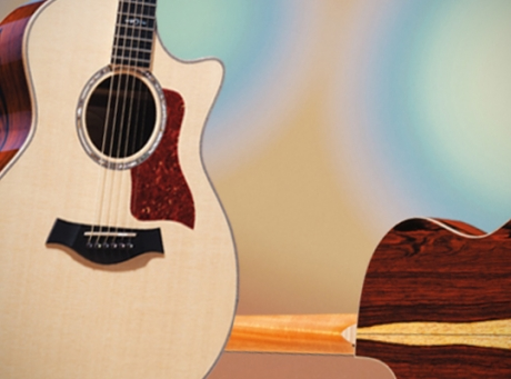 Taylor Guitars Spring 2012 Limited Editions