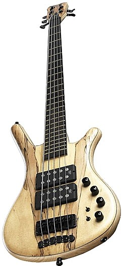 Corvette $$ SE France Spalted Maple 5 by Warwick