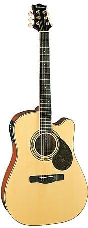 SD50CE by Silvertone Guitar