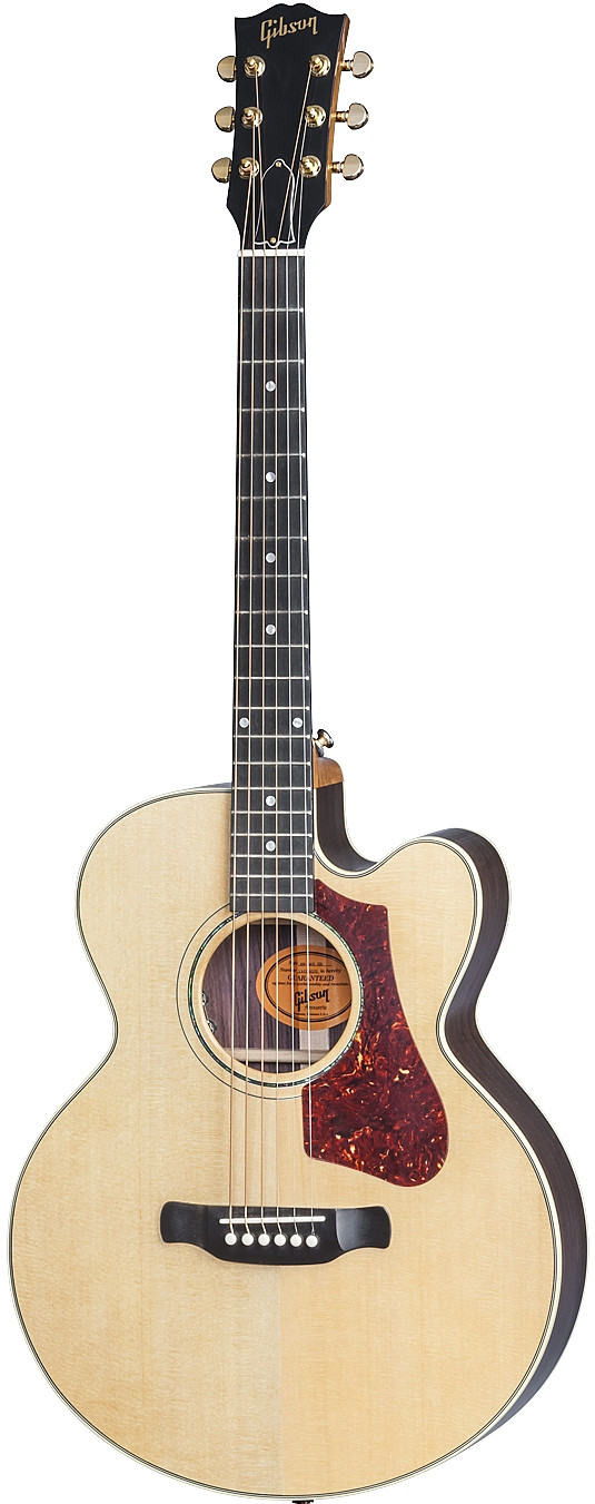 HP 665 SB by Gibson
