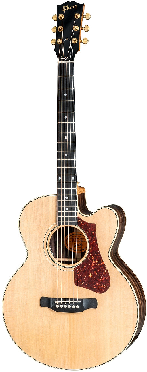 Parlor Rosewood AG 2018 by Gibson