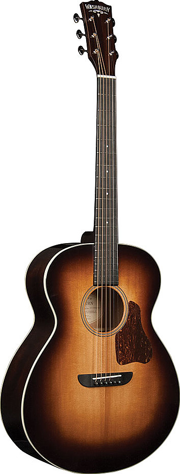 RSG100SWEVSK by Washburn