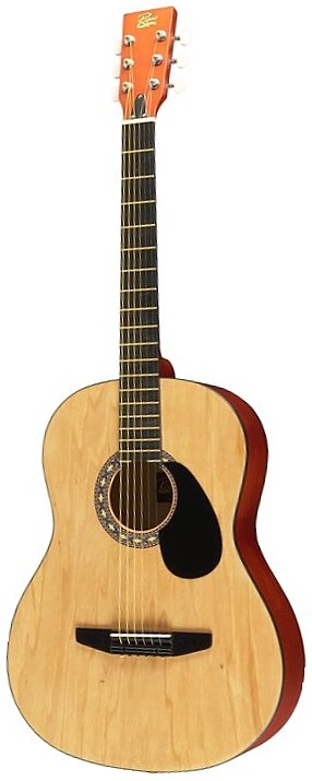 rogue starter acoustic guitar review