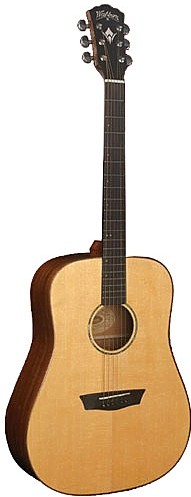WD 150SW by Washburn