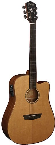 WD 160SWCE by Washburn