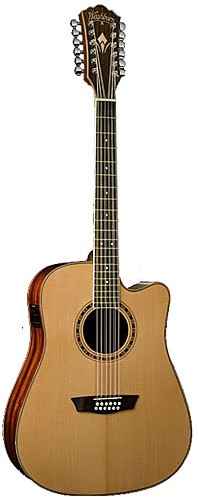 WD 10SCE12 by Washburn