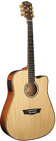WD 55SCE by Washburn