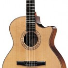 Taylor NS74ce