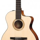 Taylor NS24ce