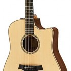 Taylor 410ce-LTD (Spring 2010 Limited Walnut 400 Series)