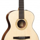Taylor NS24e-G-L Left Handed