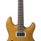 Skyline Fretless Hollowbody