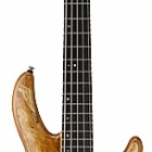 Cort A5 Custom SP