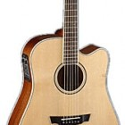 Parkwood Guitars PW360M