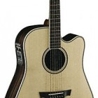 Parkwood Guitars PW560