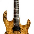 Sidewinder 6 Spalted Maple Top