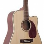 Johnson Guitars JD-06-CFE
