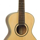 Johnson Guitars JG-TR15
