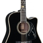 Takamine 2012 Limited Edition