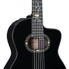 Takamine 2012C Limited Edition