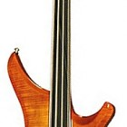 Passion IV Custom Fretless Delta Metal