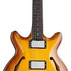 SH445 Semi-Hollow Double Cutaway Carved Top Guitar