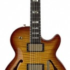 SH550 Semi-Hollow Carved Top Guitar