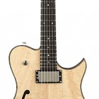 SH250 Semi-Hollow Electric Guitar