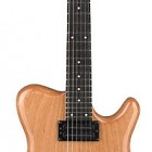 Allan Holdsworth Signature Series H2