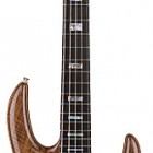 LB75W Claro Walnut Series 5-String Active Bass