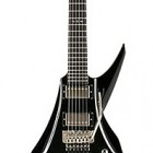 DBZ Guitars Bird Of Prey 2