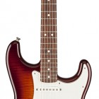 Standard Stratocaster Plus Top