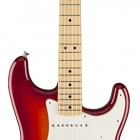 Standard Stratocaster Plus Top with Locking Tremolo