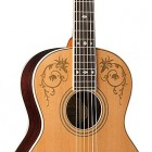 Washburn WP5234S