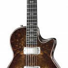 Taylor SB-C1-T Custom Walnut Tremolo