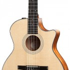 314ce-N-LTD (2012 Spring Limited Edition Hawaiian Koa Series)