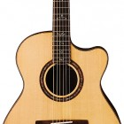 Paul Reed Smith Tony McManus Private Stock Acoustic