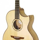 Avalon Guitars Ard Ri 2-360