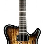 H2 Allan Holdsworth Signature