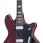 Schecter T S/H 1B