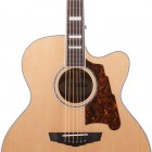 D`Angelico Guitars Premier Madison
