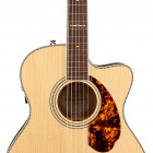 Fender PM-3 Limited Adirondack Triple-0, Mahogany