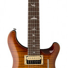 Paul Reed Smith SE Floyd Custom 24 (2017)