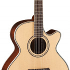 Parkwood Guitars P870