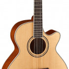 Parkwood Guitars S67