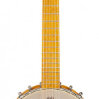 Gretsch Guitars G9460 Dixie 6 Guitar-Banjo