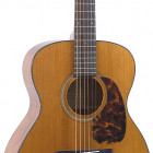 RO-T16 Recording King Torrefied Adirondack Spruce Top, 000