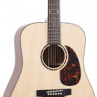 RD-G6 Recording King G6 Solid Top Dreadnought