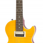 Slash AFD Les Paul Special II Outfit