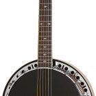 Stagebird 6-String Electric Banjo
